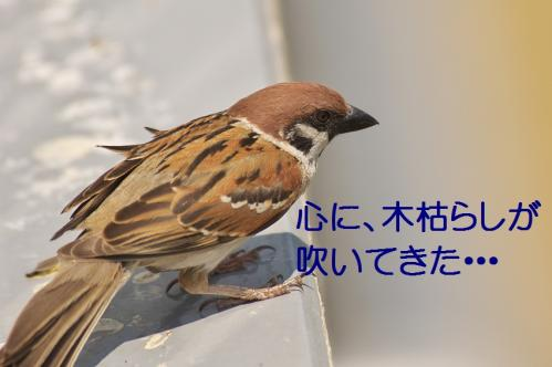 200_20120612215326.jpg