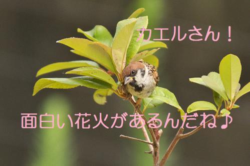 200_20120831220234.jpg