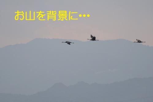 200_20121216203350.jpg