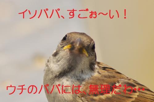 210_20120613233722.jpg
