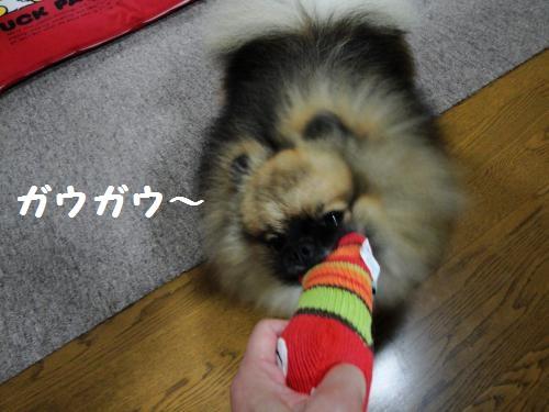 20120923おもちゃ5