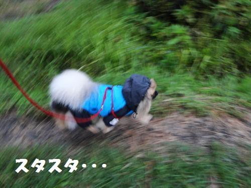 20120930台風2