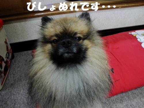 20120930台風5