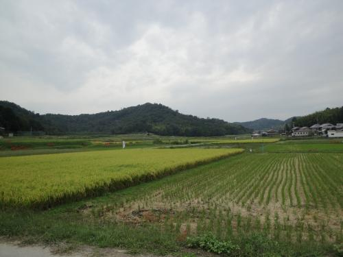 20120929風景1