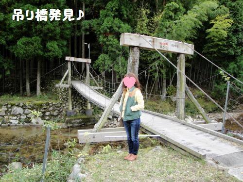 20121110koyo2.jpg