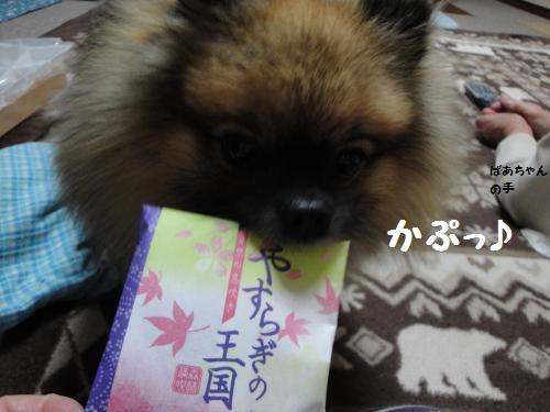 20121110taki12.jpg