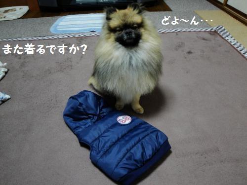 20121223fuku-2.jpg