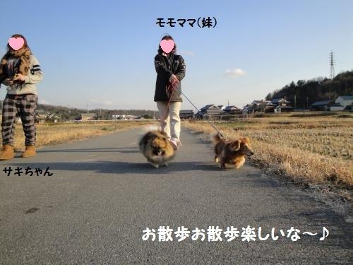 20130101momo-4-1.jpg