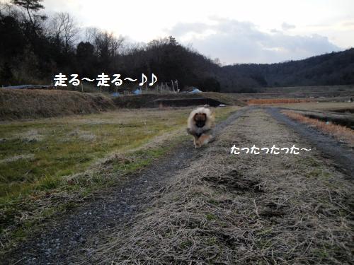 20130127sanpo-4.jpg