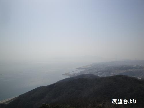 20130309suma-5.jpg
