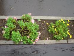 2012-09-08大雨被害 (2)