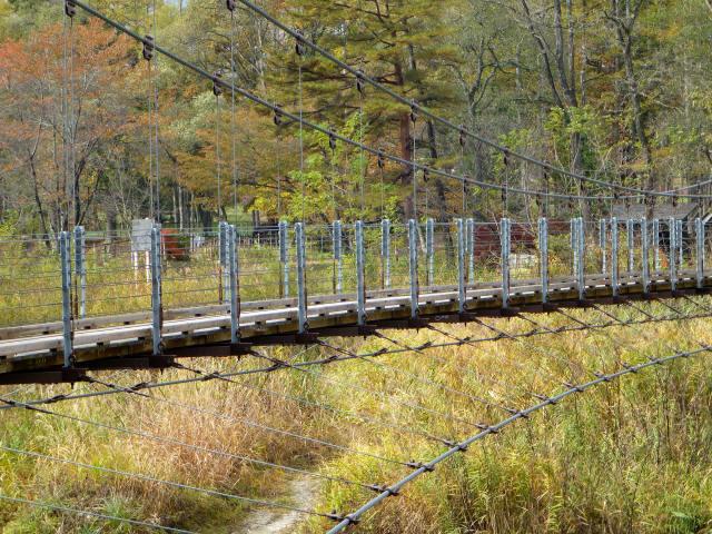 白馬グリーンパーク外の吊橋2