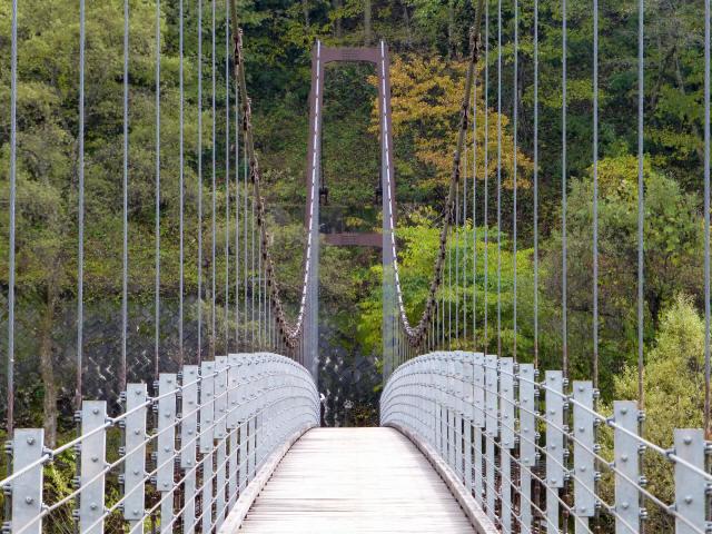 白馬グリーンパーク外の吊橋6