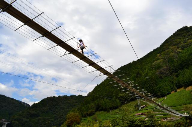 入島の吊橋23