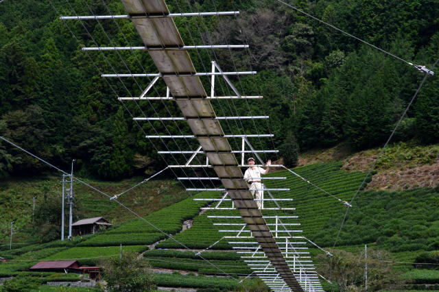 入島の吊橋24