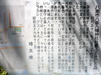 八条八幡神社