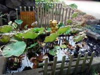 ルンビニーの花園