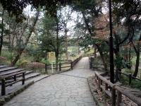 園内の散策路