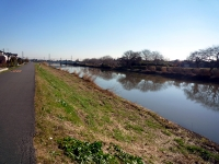 元荒川下流