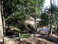 崖上からの池