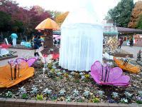 植物園展示棟前のイルミネーション01