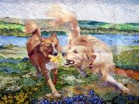 凛々しい犬二匹