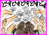 snap_tadanopan_20132603952.jpg