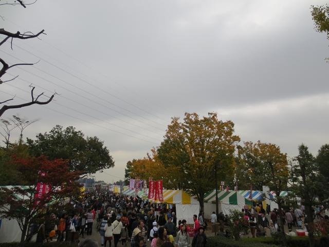 2013-11-9鶴ヶ島産業まつり (2)_R