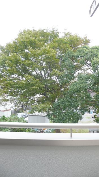 駅16分 広い1K+ウォークインクローゼット 最上階 5万円