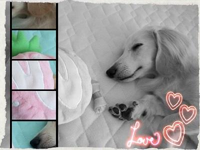 DSC_1308_Max_Love_Sju.jpg