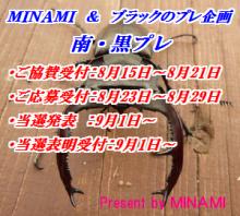 MINAMI-1.png