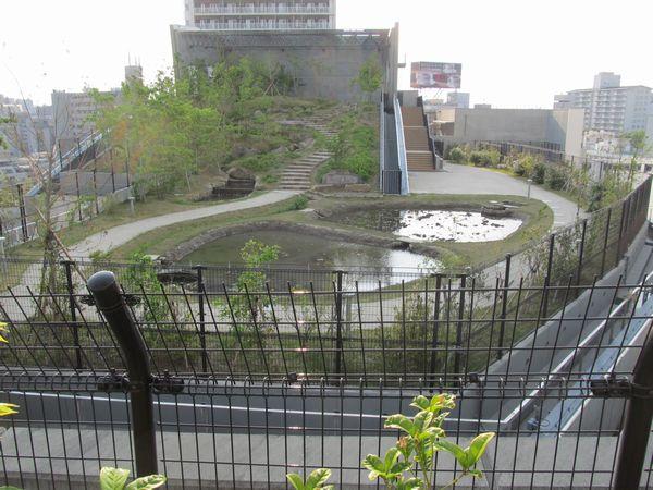末端部にある池は通常は開放されない。