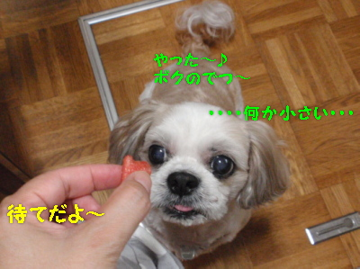 P7141094.jpg