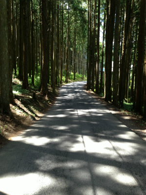 s-dorokawaIMG_0747.jpg