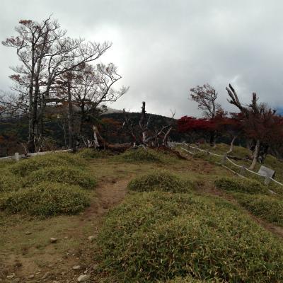 s-oodaigaharaIMG_1077.jpg