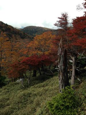 s-oodaigaharaIMG_1087.jpg