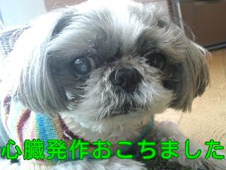 moblog_491391ef.jpg