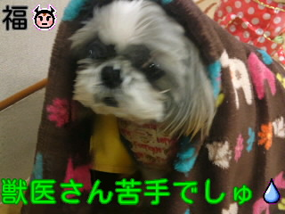 moblog_ae673801.jpg