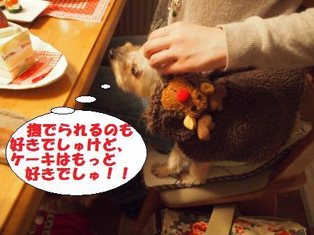 s_PC221317.jpg
