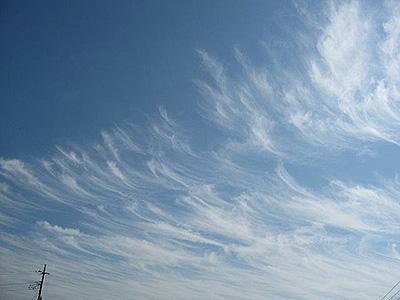 ふわり秋の雲