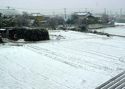 1・14 雪景色