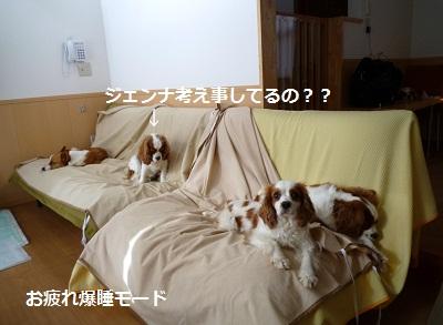 2012_0504_161722-P1130943.jpg