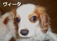 2012_0514_091054-P1130994.jpg