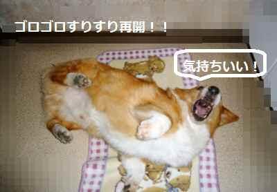 2012_0529_081433-P1140169.jpg