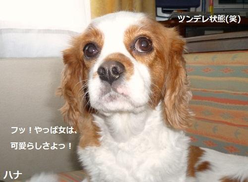 2012_0702_124442-P1140260.jpg