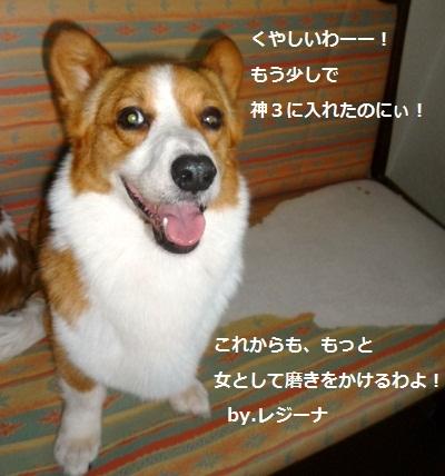 2012_0702_124540-P1140265.jpg