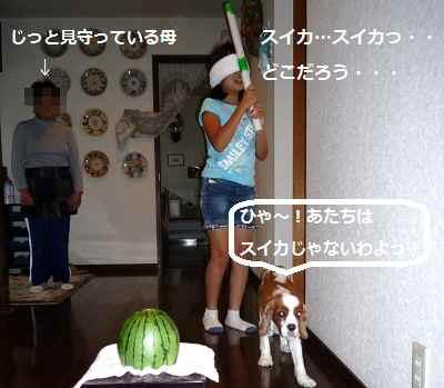 2012_0724_114438-P1140466.jpg