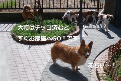 2012_0807_084445-P1140564.jpg