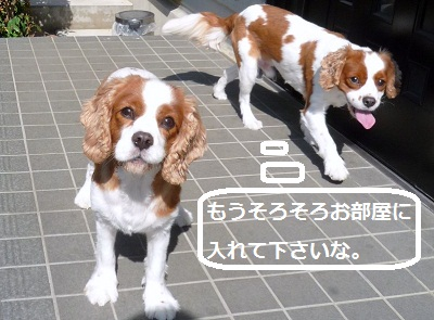 2012_0807_084856-P1140571.jpg