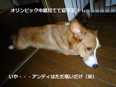 2012_0813_154838-P1140641.jpg